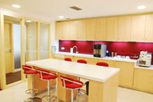 Kitchen area Serviced Offices Apartment 0 Sq.m. Prague Stock Exchange