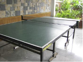Table Tennis Studio Apartment 27 Sq.m. Garden Paradise Pattaya
