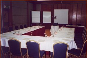 Conference Room 1-Bedroom Apartment 110 Sq.m. The Maple Suite
