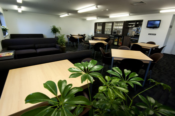 Lobby, Serviced Apartments Ref: 34849, Auckland