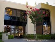 Main Picture Serviced Offices Apartment 0 Sq.m. 19925 Stevens Creek Blvd.