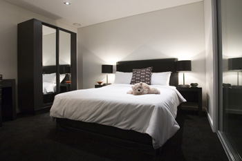 Modern secured high rise hotel apartment complex located in Auckland Water front area. This  one-bedroom serviced apartment is 52 sq.m ,  and can sleep 2 people maximum.  The apartment has 1 bathroom.