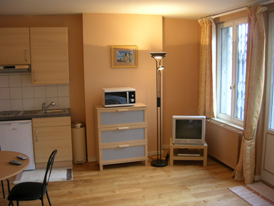 Located in a beautiful 19th-century townhouse. Each apartment has its own unique decoration. Japanese-style garden with pond rented with the Milano apartment. This  studio serviced apartment is 35 sq.